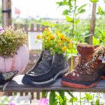 Nachhaltige Ideen für Ihr Zuhause